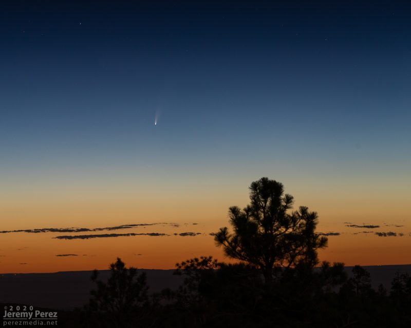 Comet in twilight over desert landscape with evergreen tree in foreground.