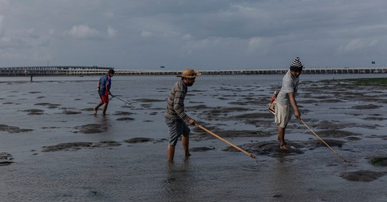 With Tourists Gone, Bali Workers Return to Farms and Fishing