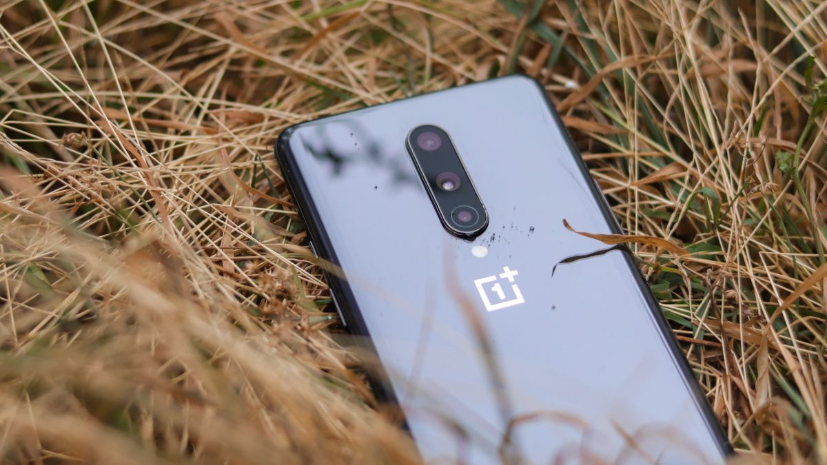 OnePlus Nord SE Specification and Feature