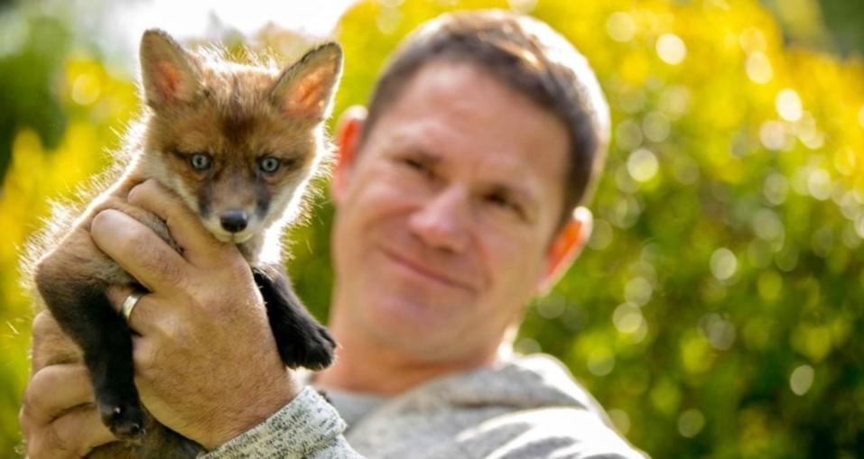 Fantastic Foxes: Their Secret World